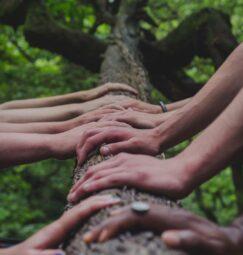 Χτίζοντας μια συνεργατικότερη κοινωνία (εκδήλωση)